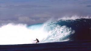 Finnegan surfing
